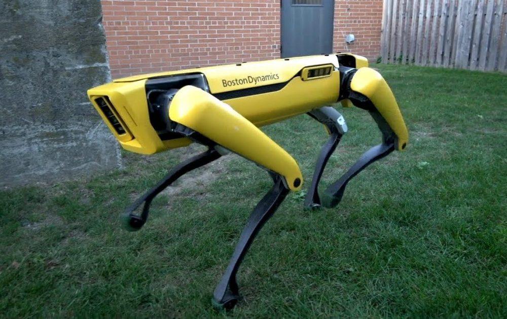 Coronavirus: cane robot controlla i runner a Singapore